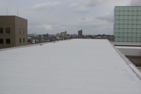 2005 新潟県自治館本館防水改修工事